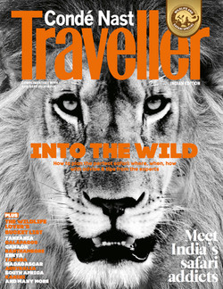 David Crookes | India | Wildlife