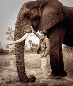 David Crookes | Botswana | Elephant