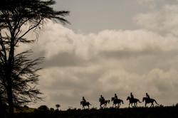 David Crookes | Kenya | Arijiju