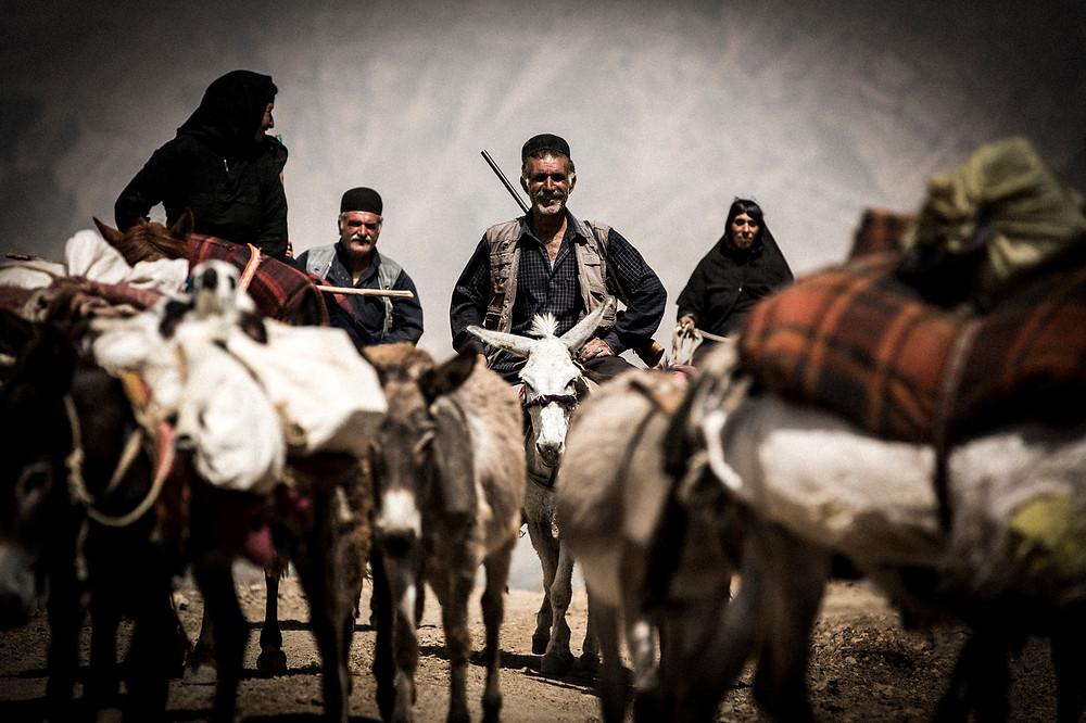 David Crookes | Bakhtiari | Nomadic | Iran | Donkey