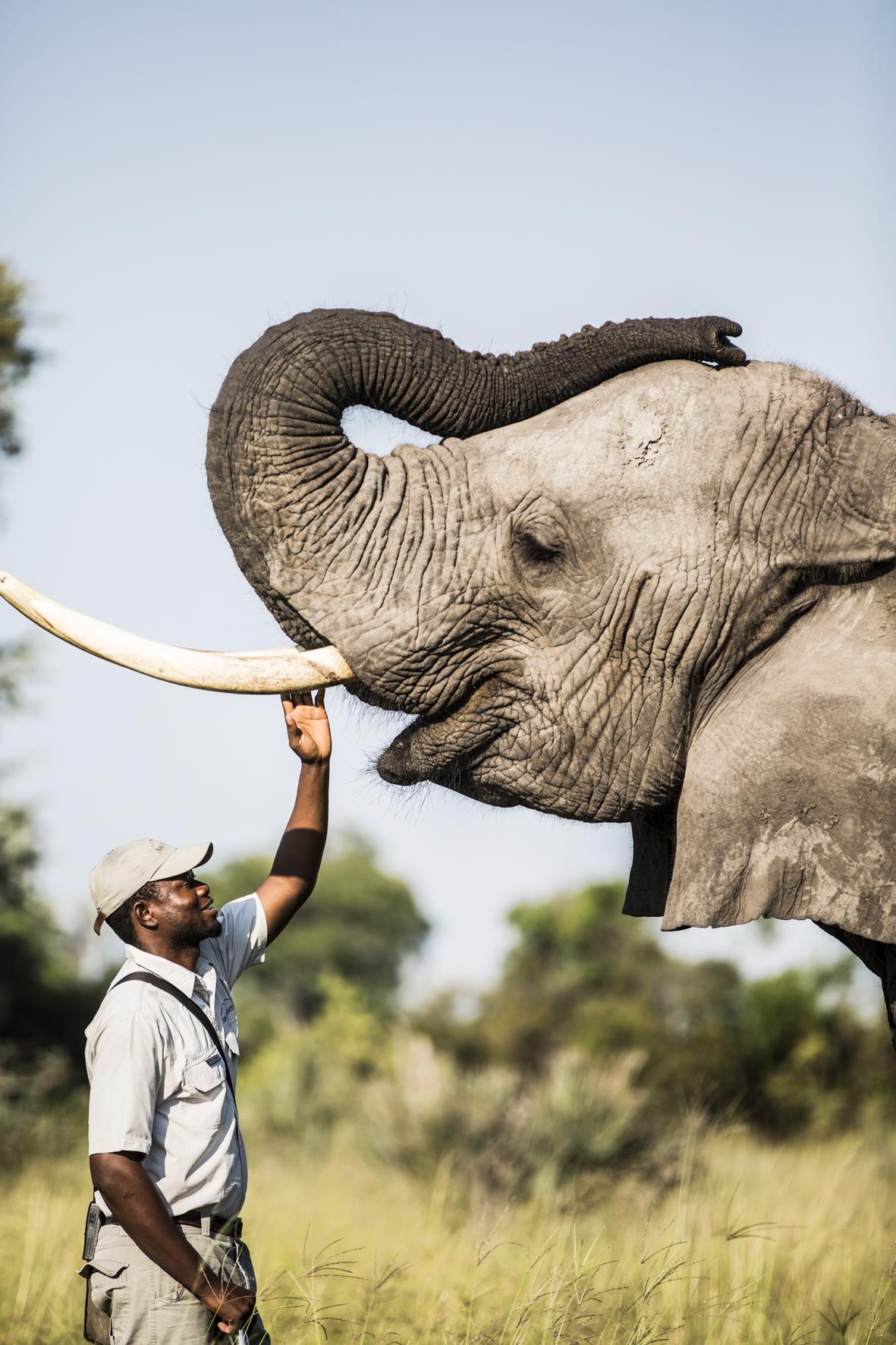 AbuCamp-Botswana-CrookesAndJackson-6054