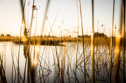 VumburaCamp-Botswana-CrookesAndJackson-9134