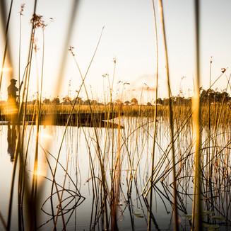 VumburaCamp-Botswana-CrookesAndJackson-9