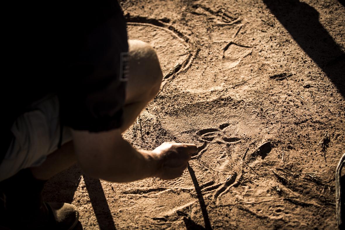 More-Marataba-Trails-CrookesAndJackson-6037