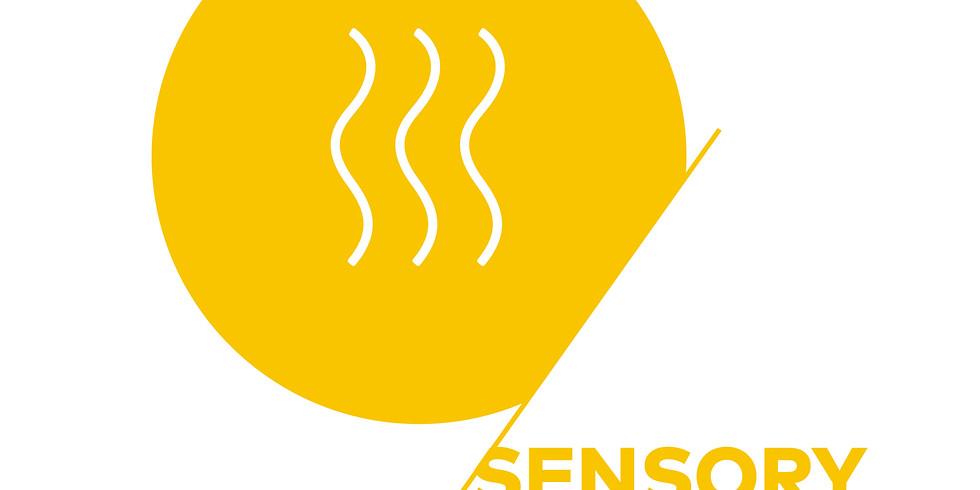 Sensory Skills Foundation