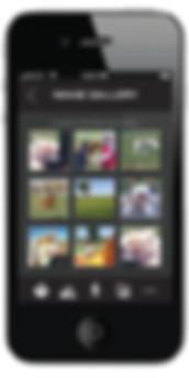 m8_dog park app-01.png