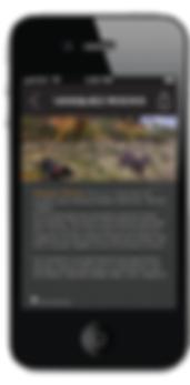 m8_dog park app-05.png