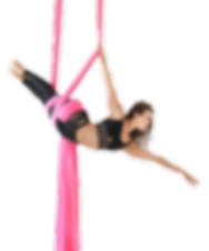 Jill Franklin owner of Aerial Physique in Los Angeles