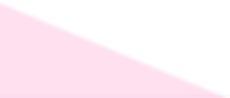 PINK TRIANGLE.png