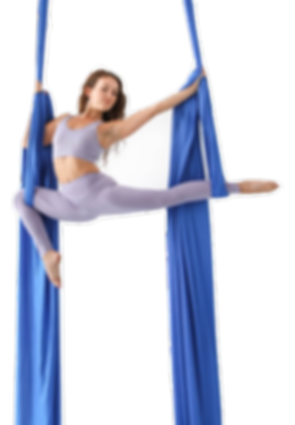 jill Franklin offers teacher traning in aerial silks around the world. We specialize in safety, technique and etiquette.