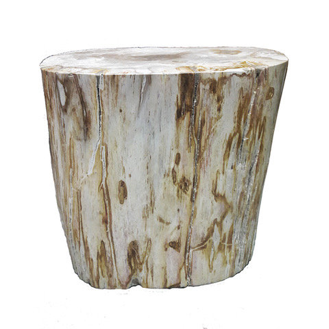 PETRIFIED WOOD END TABLE