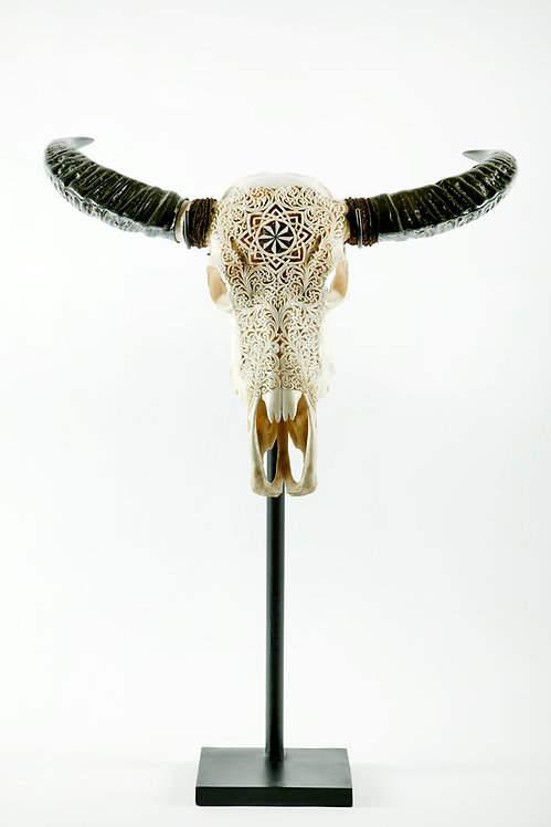 CARVED BULL SKULL ON METAL STAND