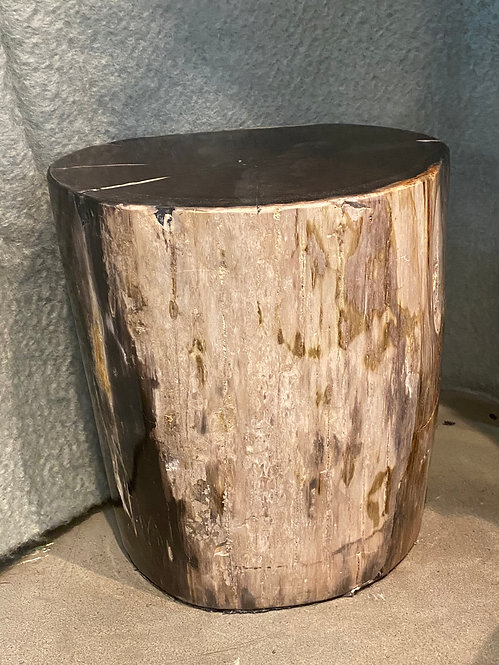 PETRIFIED WOOD OVAL END TABLE
