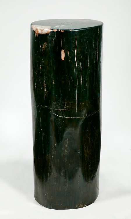 PETRIFIED WOOD OVAL PEDESTAL