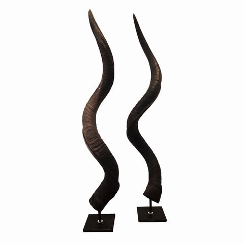 KUDU HORNS ON METAL STAND