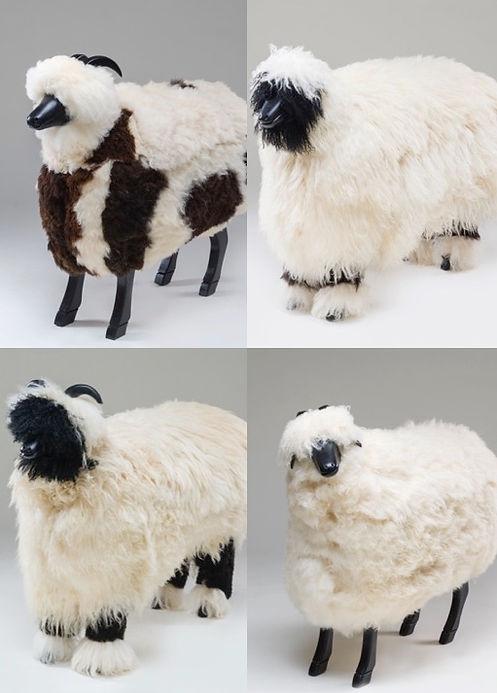 sheepLAND.jpg