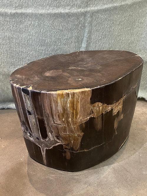 PETRIFIED WOOD OVAL END TABLE