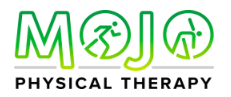 Mojo Physical Therapy