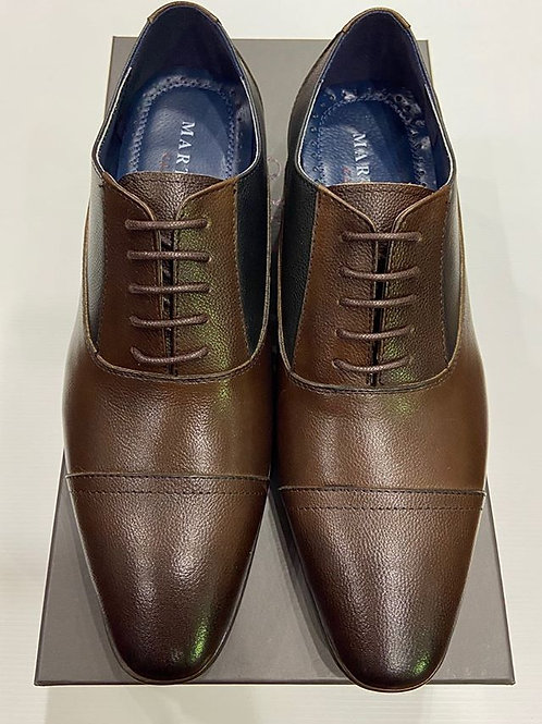 Martino Carolus: Brown & Navy Leather Lace-Up Dress Shoe