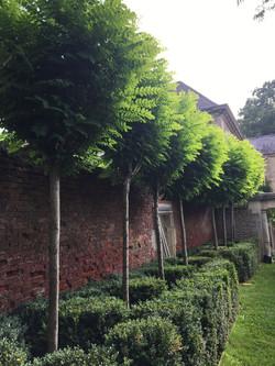 garden-design-somerset