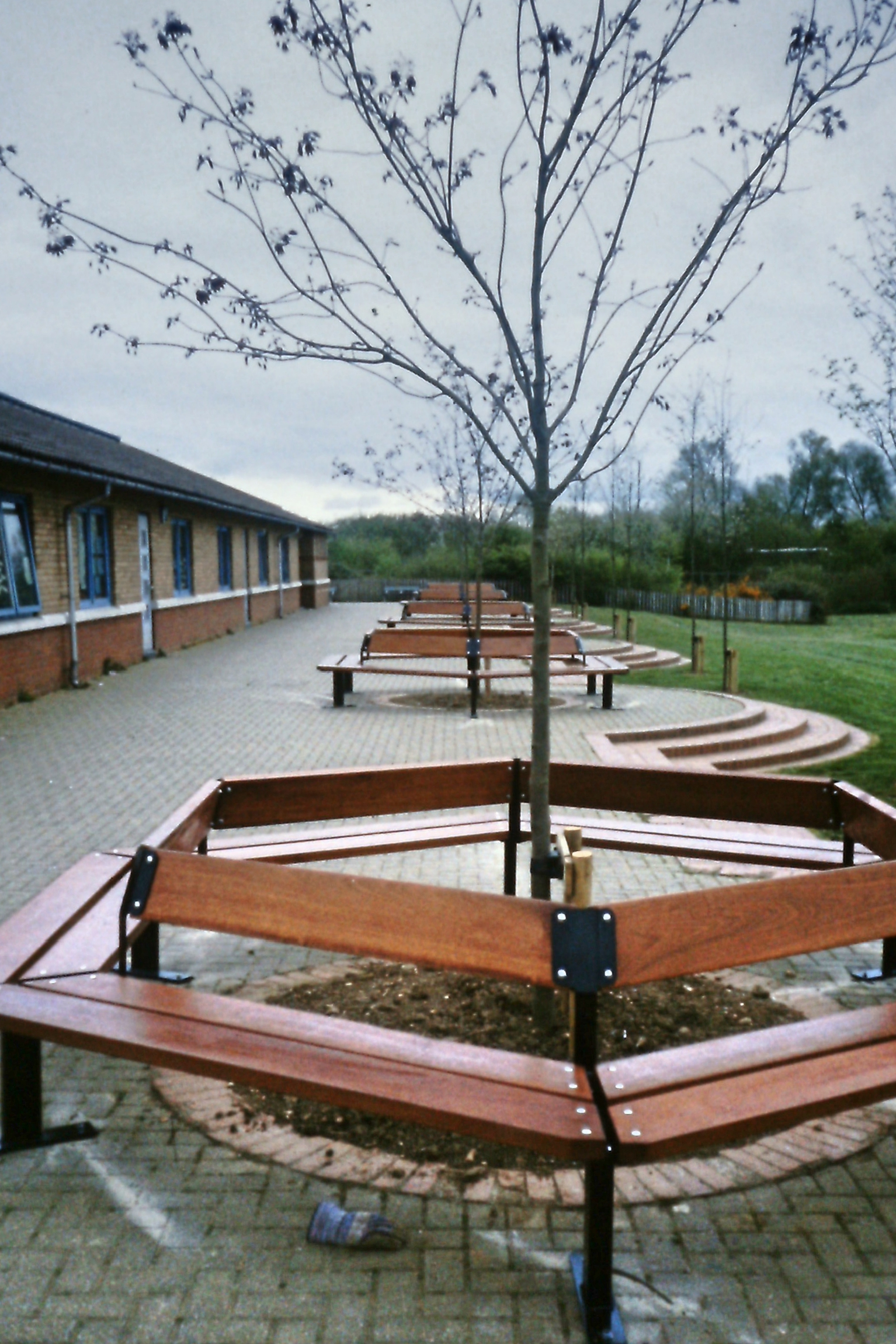 Beaufort Tree Seat (7)