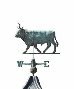 Bull - NW176