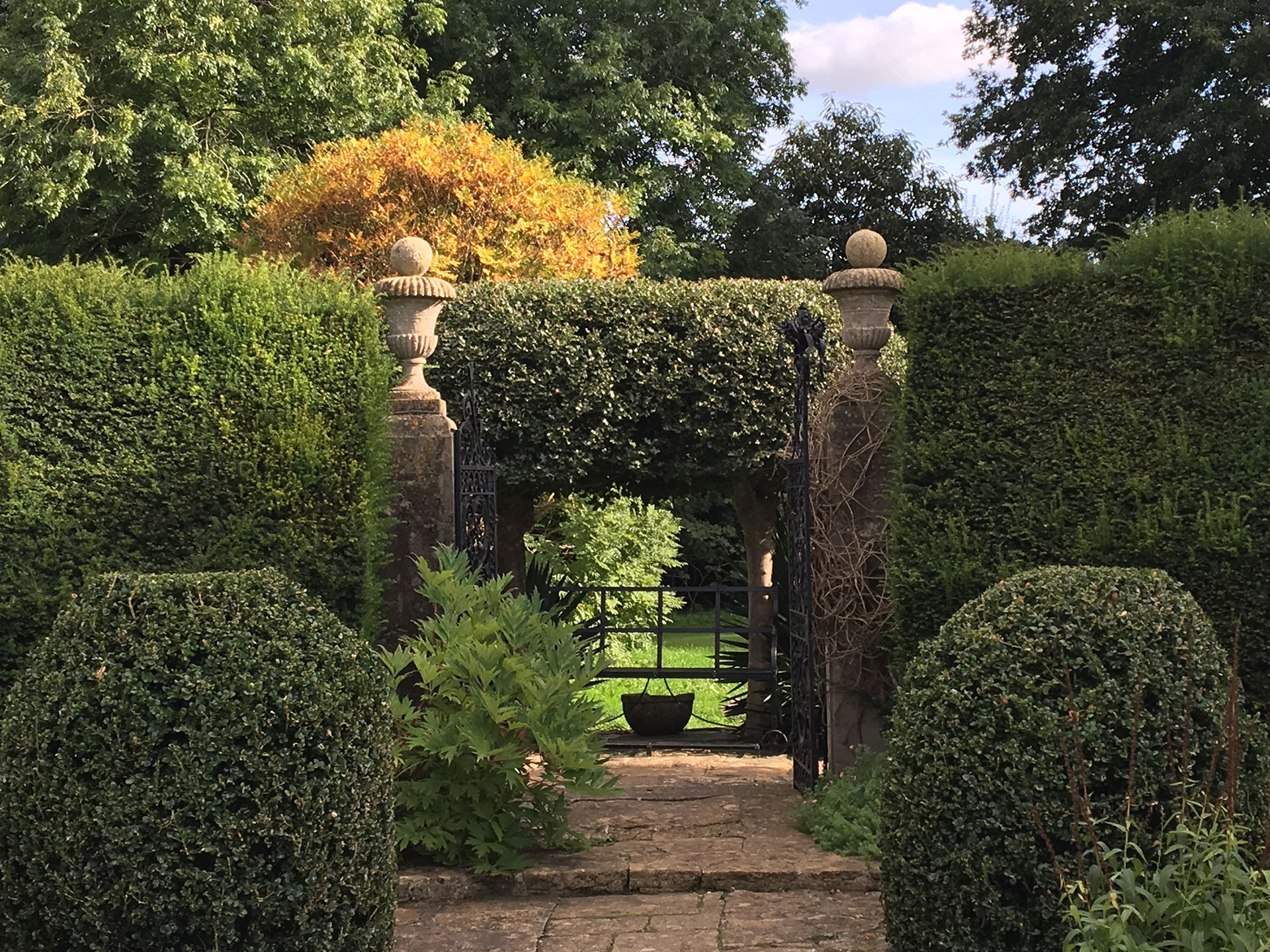 landscape-designer-st-johns-wood