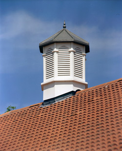 Cupolas for houses