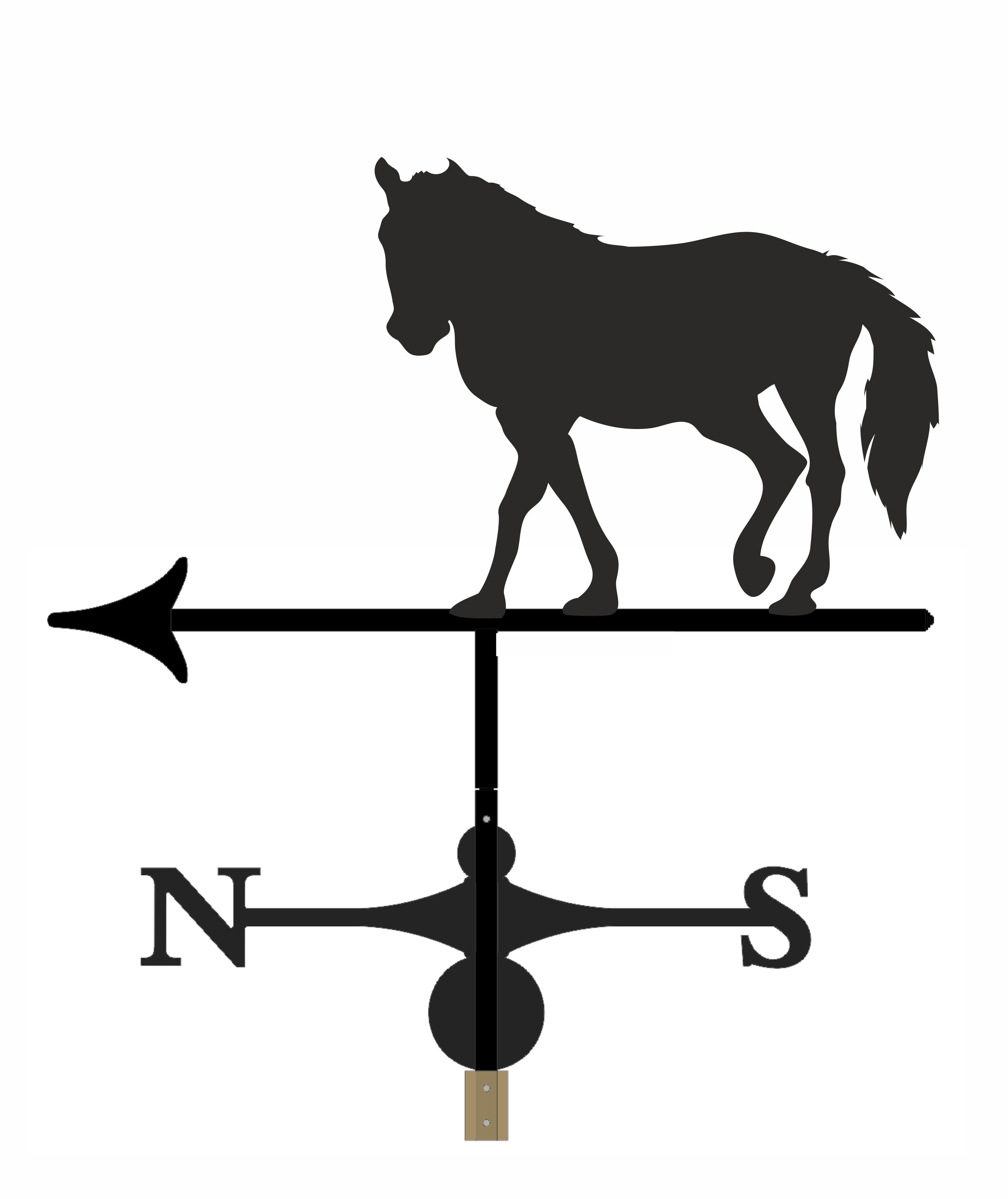Horse - WVH1