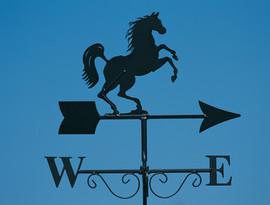 Rearing Horse Weathervane