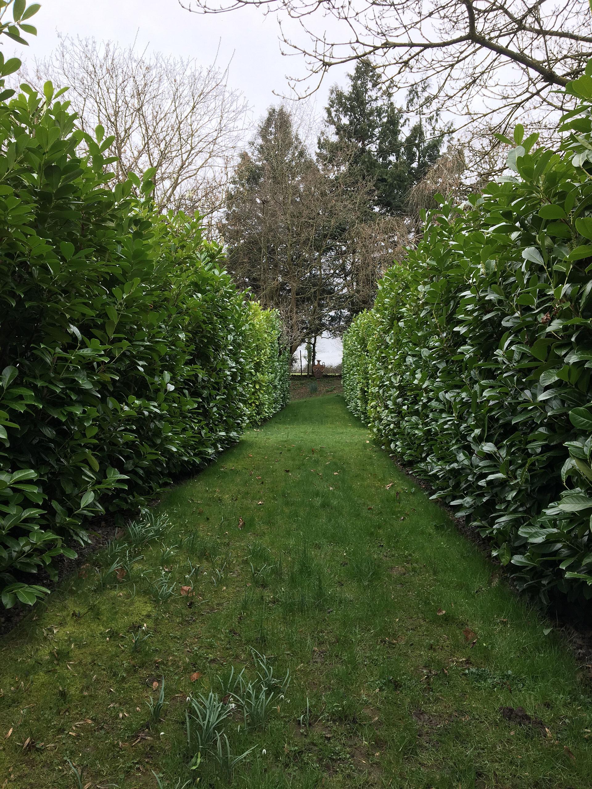 garden-design-bristol