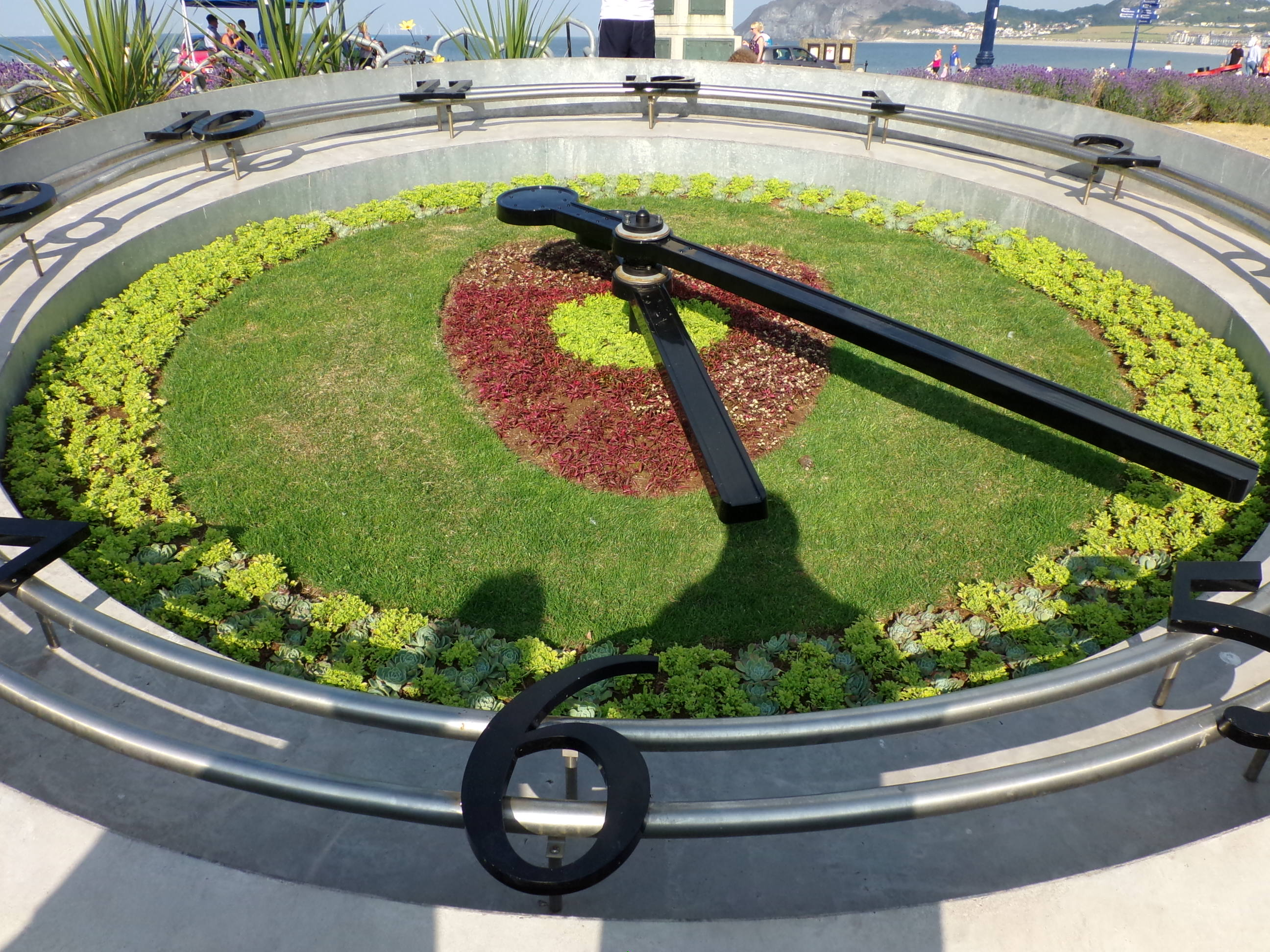 Planted Floral Clock