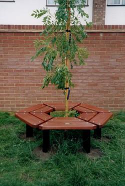 Beaufort Tree bench (2)