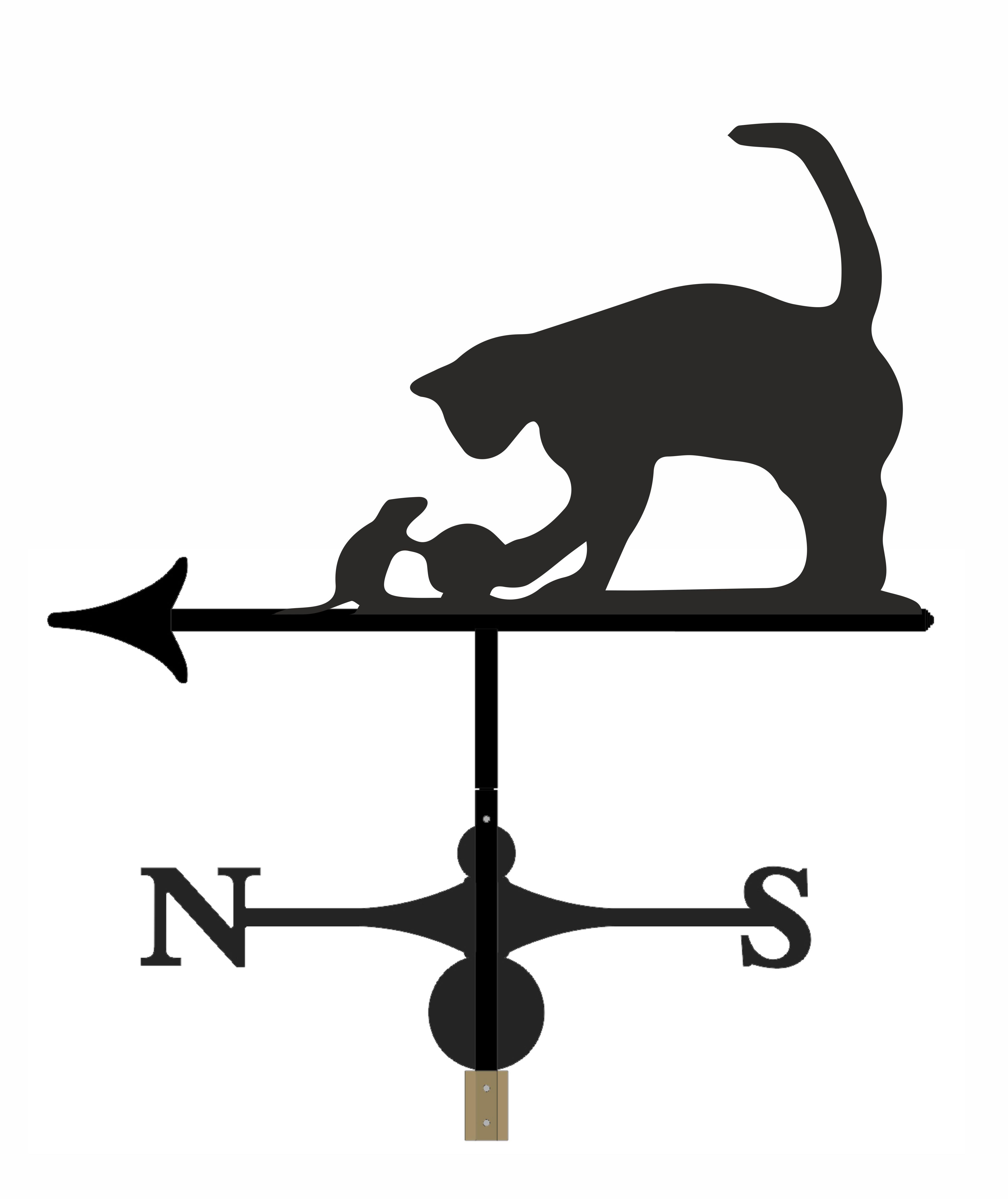 Cat - WVC1