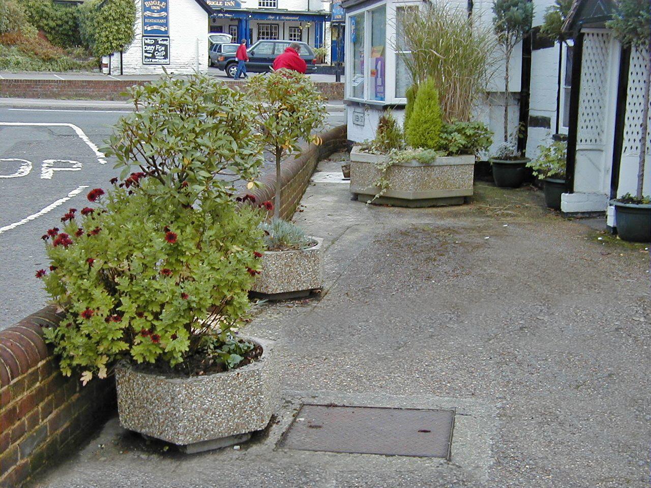 Southampton planters (1)