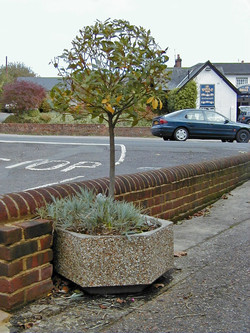 Southampton planters (3)