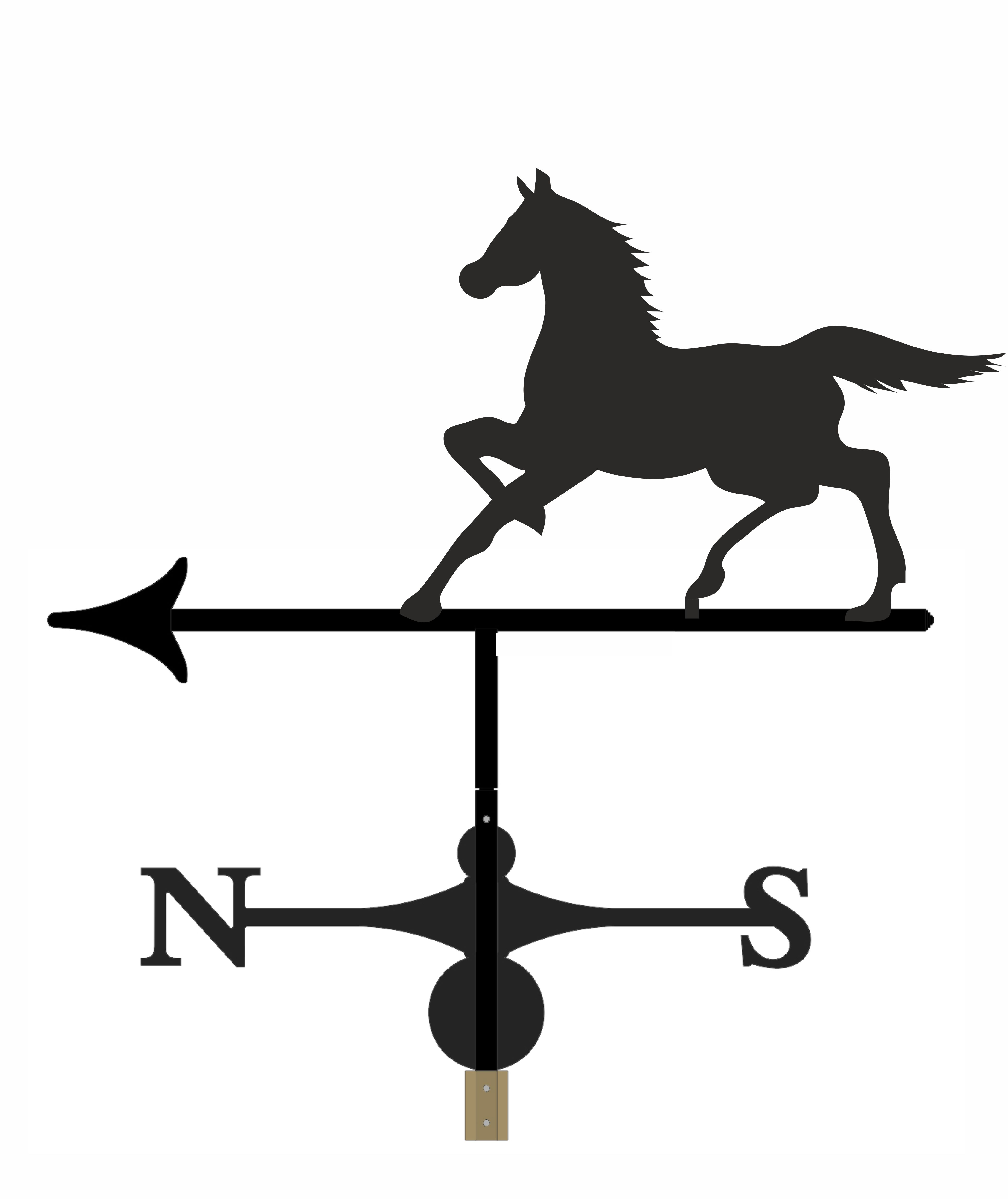 Horse - WVH2