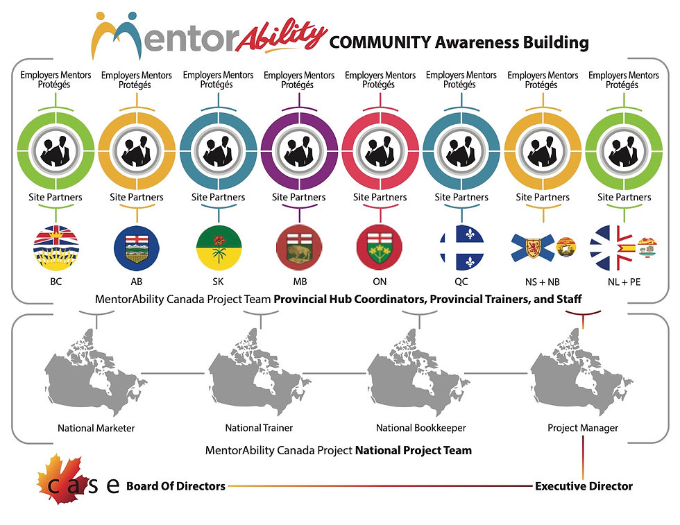 Infographic showing how the MentorAbility Program works from the national team to employers, mentors and proteges.