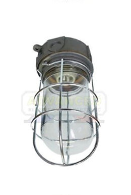 HM Light Guard with Glass Globe & Wire Guard