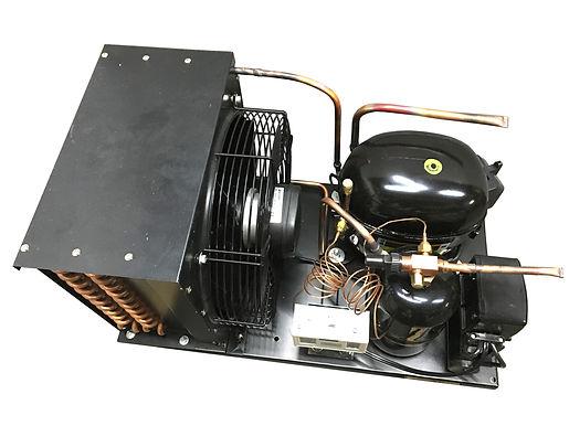 Indoor NT2180GKV2 Unit  1 HP, Low Temp R404a, 220V