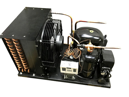 Outdoor NT2180GKV1 Low Temp 1HP, R404a, 115V