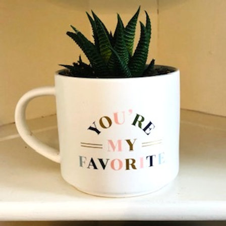 Succulent Mug-You're My Favorite