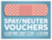 Spay Neuter Vouchers Poster