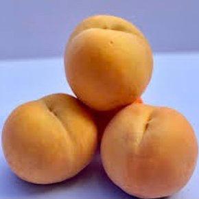 Cling Peaches Per Kg