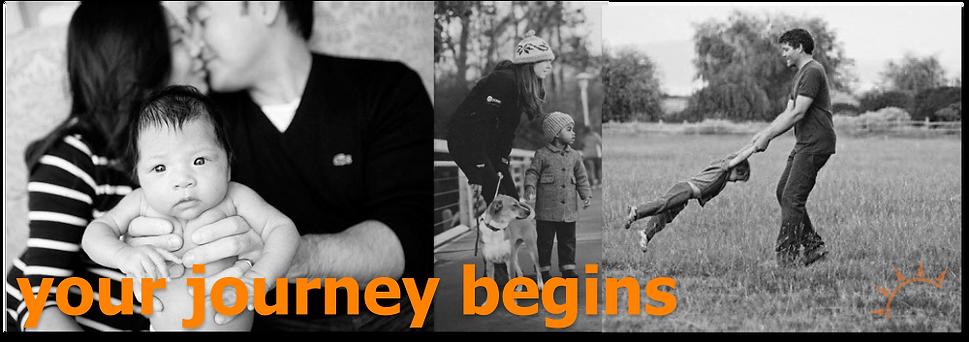 Your Journey Begins