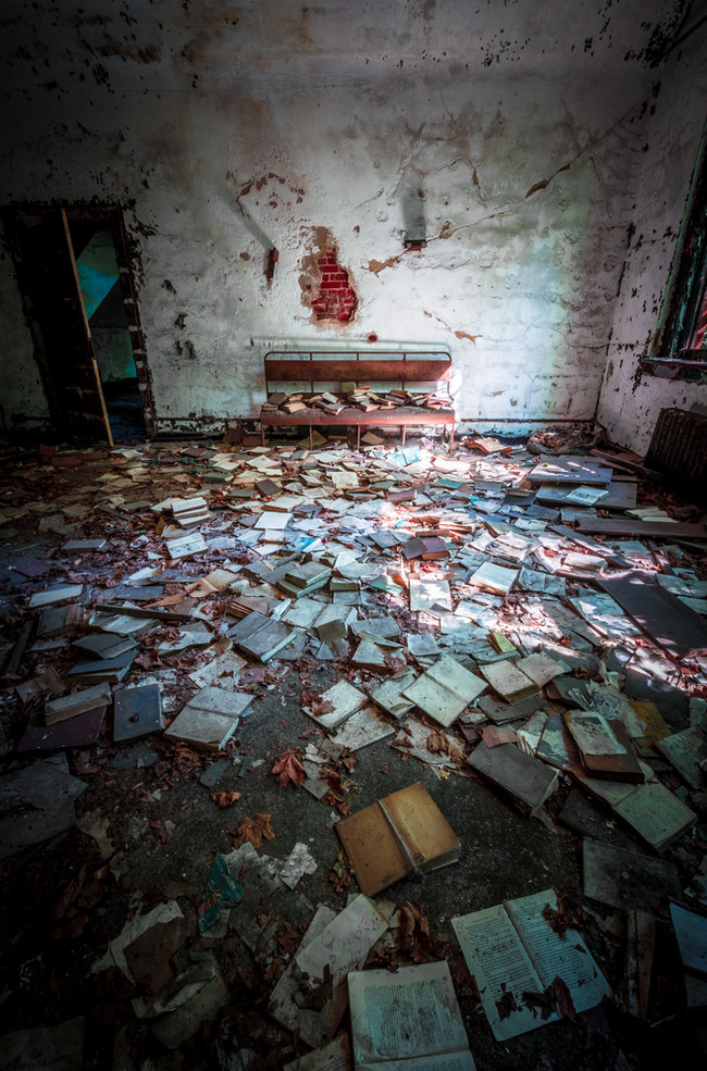 North Brother Island Library