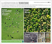 Répartition_surfaces agricoles_MinAgri.JPG