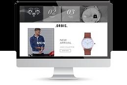 online shop eceommerce wix design example.png