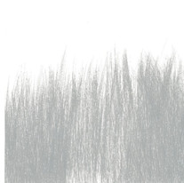 Brush Landscape