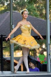 Ballet Danceer